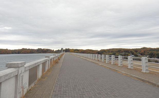 左がダム右は市街地