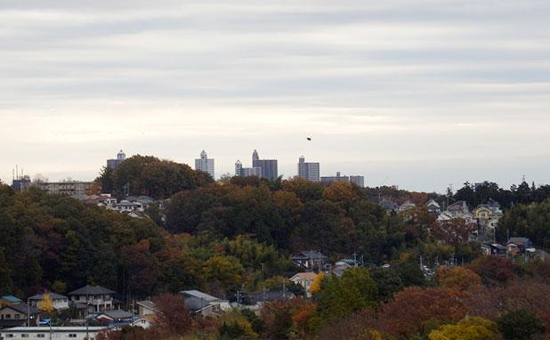 市街地の方からの眺め