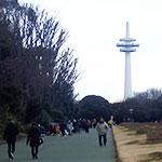 所沢航空記念公園の「フリーマーケット」に行ってきた